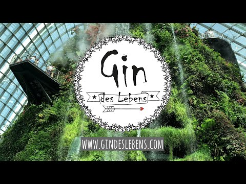 Singapur | Singapore Gardens by the Bay, Cloud Forest, Flower Dome & OCBC Skywalk - Singapore Part 2