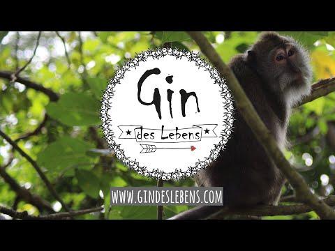 Monkey Forest Ubud Bali Indonesia | Affenwald Ubud Bali Indonesien