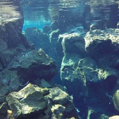 Schnorcheln Silfra Spalte Island www.gindeslebens.com