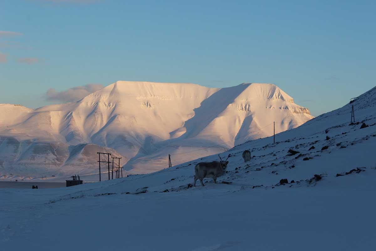 Rentier Coal Miner's Cabins Longyearbyen Spitzbergen © Ines Erlacher und Thomas Mussbacher
