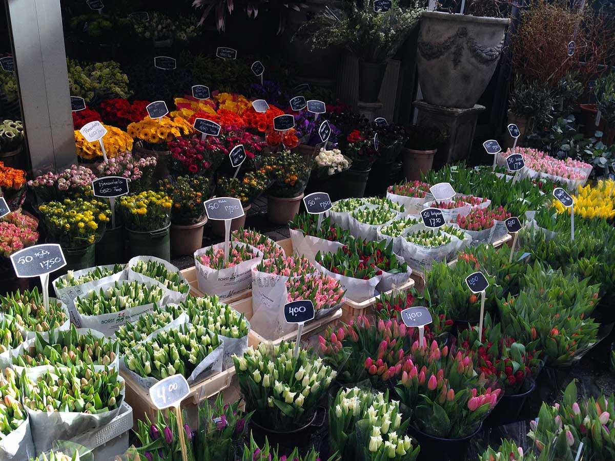 Blumenmarkt Amsterdam © Thomas Mussbacher und Ines Erlacher