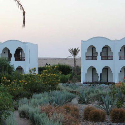 Anlage Hotel Gorgonia Beach Marsa Alam Ägypten Tauchparadies in der Krise www.gindeslebens.com