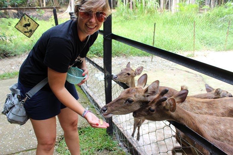 Deerland Kuala Lumpur Malaysia © Thomas Mussbacher und Ines Erlacher