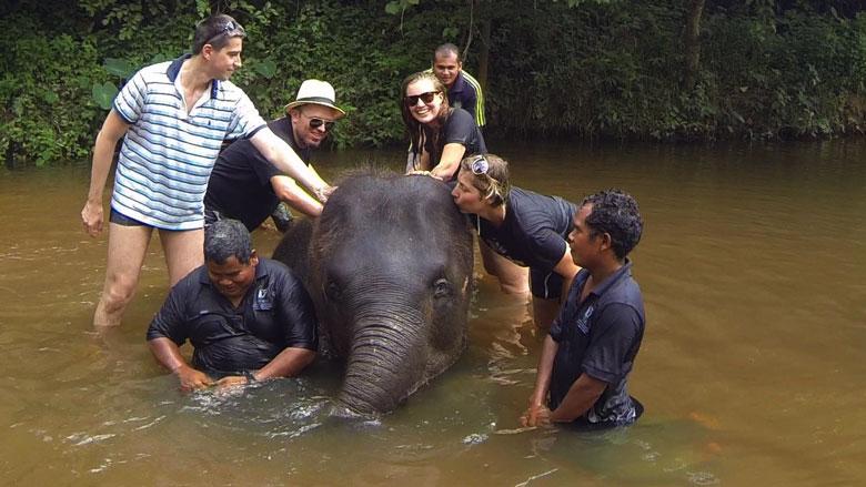 Elephant Sanctuary Kuala Lumpur Kuala Gandah Pahang Elephant Conservation Centre Malaysia