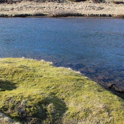 Nationalpark Thingvellir Island www.gindeslebens.com