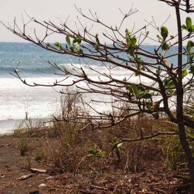 Playa Hermosa Jaco Costa Rica http://www.atrailofglitter.net