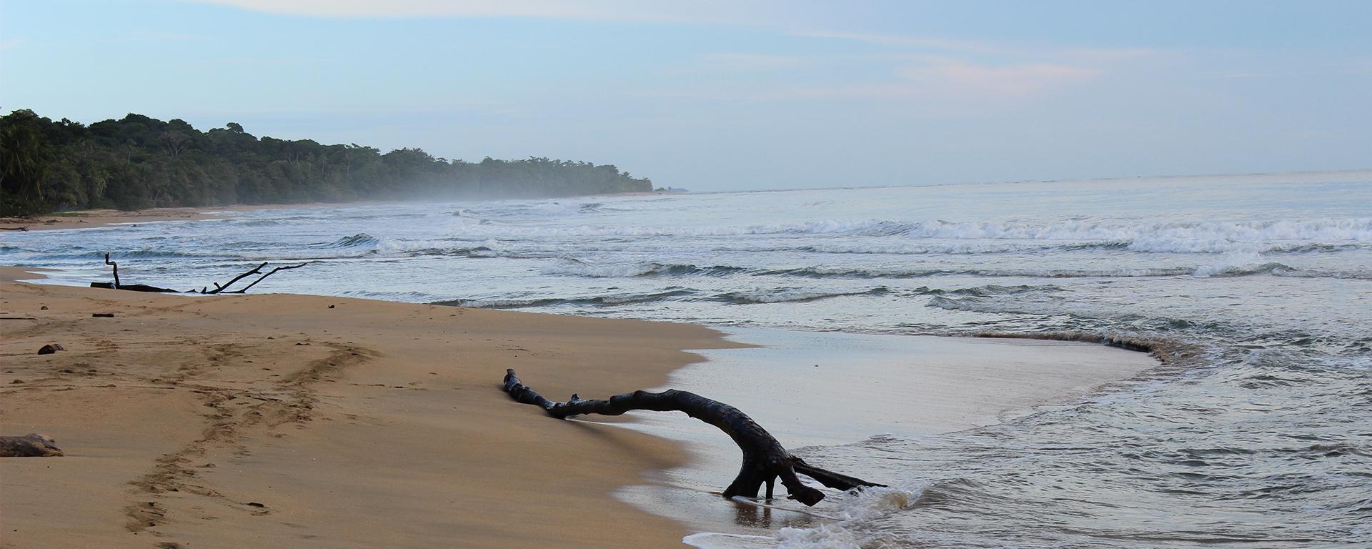Pura Vida Costa Rica – Träume werden wahr…