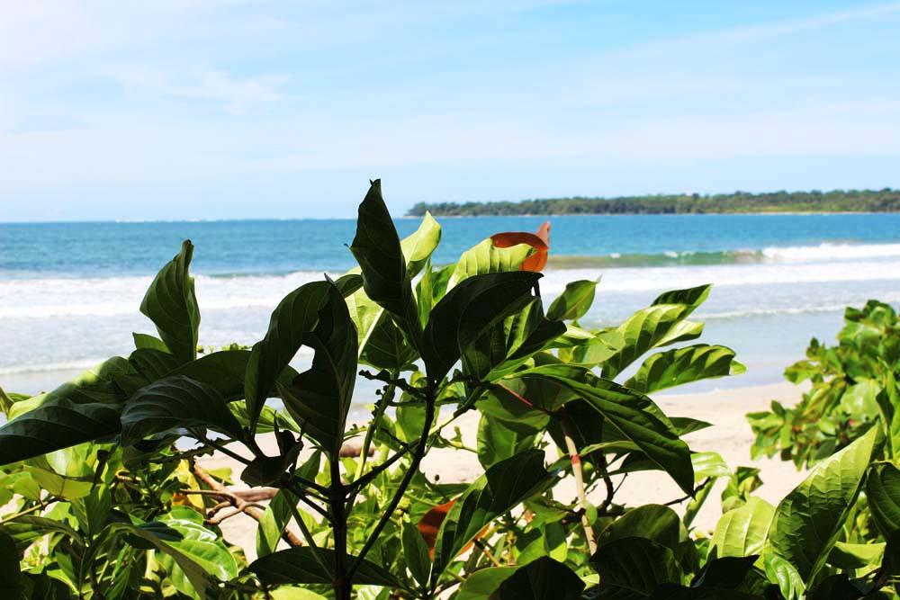 Strand Nationalpark Cahuita Costa Rica www.gindeslebens.com