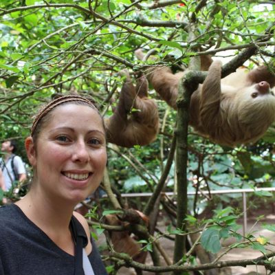 Faultiere in den Bäumen im Jaguar Rescue Center Costa Rica www.gindeslebens.com