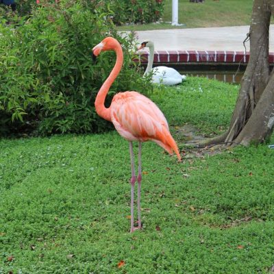 Anlage Iberostar Hacienda Dominicus Bayahibe Dominikanische Republik www.gindeslebens.com
