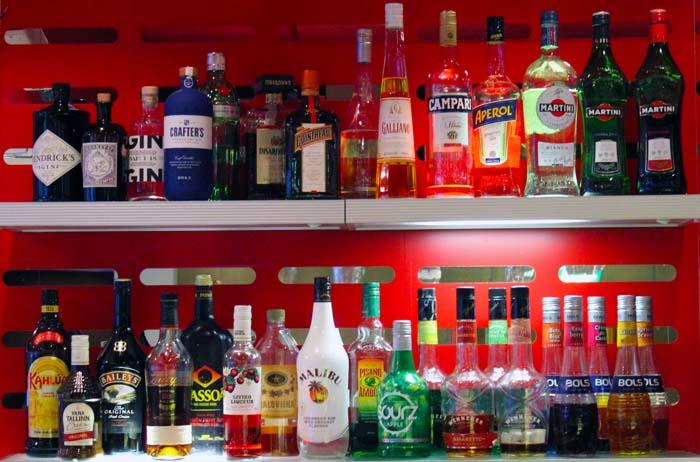 Bar Tallink Spa & Conference Hotel www.gindeslebens.com