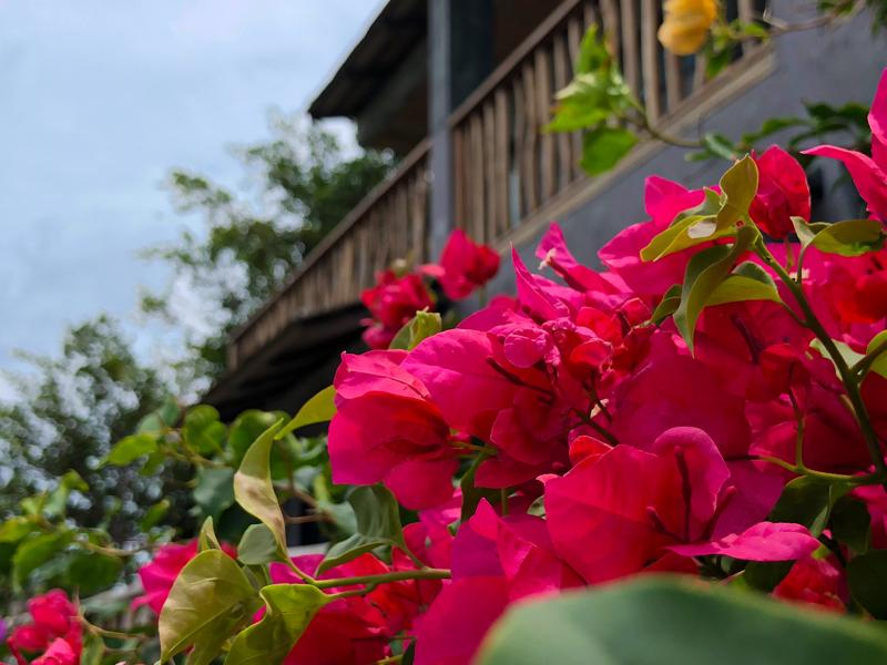 Sai Daeng Resort Koh Tao Thailand www.gindeslebens.com