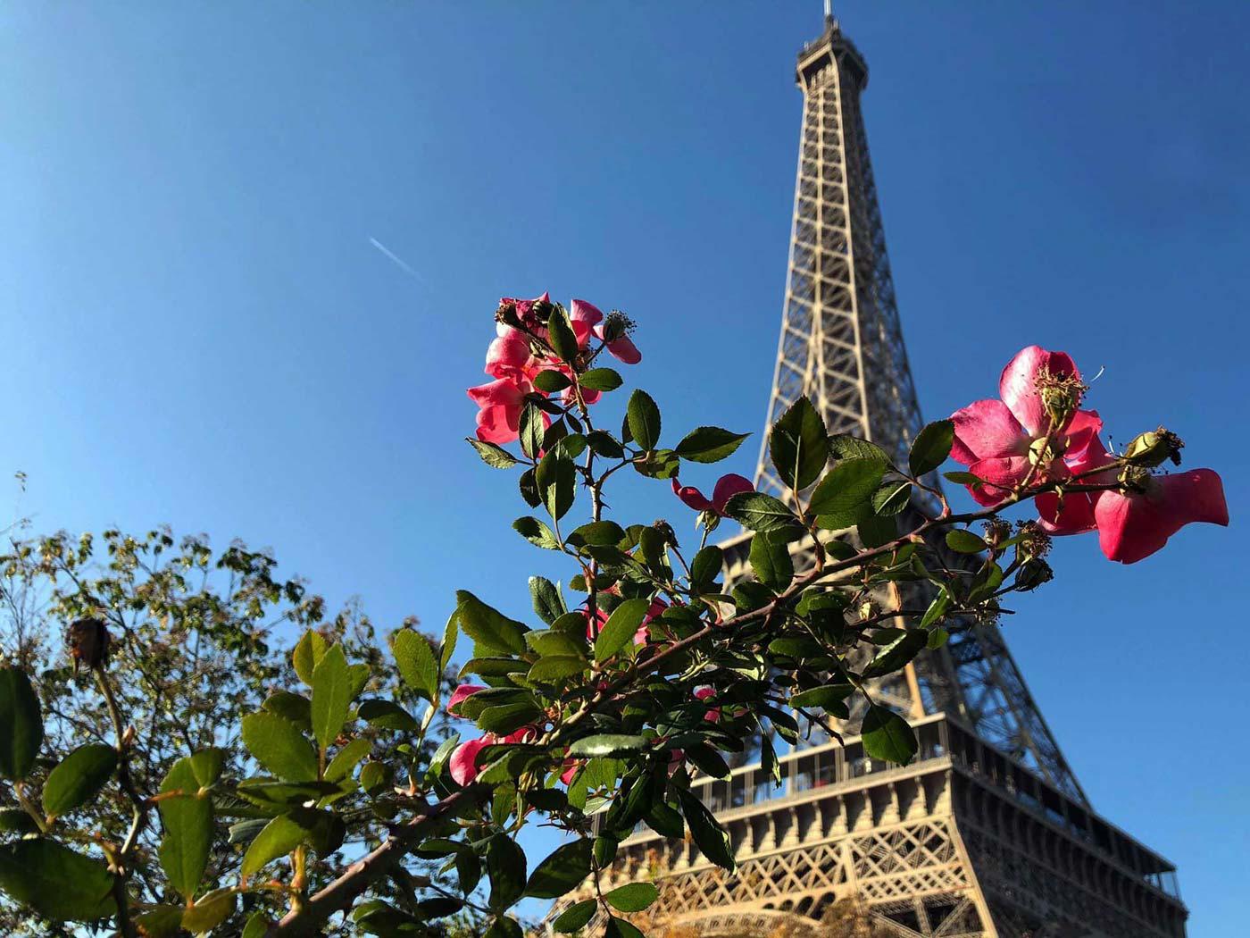 Paris Sehenswürdigkeiten - Highlights, Tipps, Hotel & Restaurants in Paris