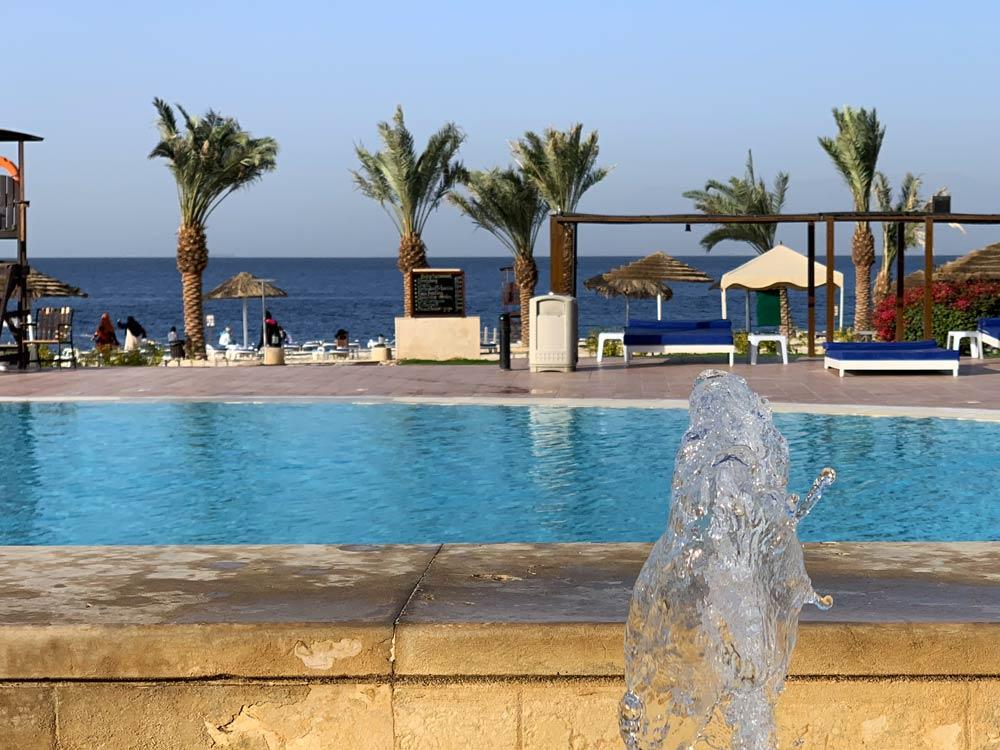 Pool Strand Jordanien Hotel Tala Bay Resort Aqaba www.gindeslebens.com