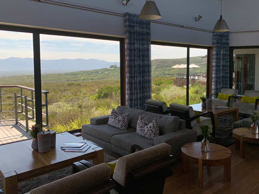 Loungebereich Grootbos Privat Nature Reserve www.gindeslebens.com