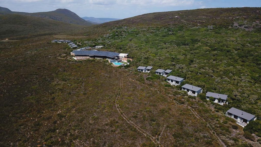 Sing Meinen Song 2019 Location Grootbos Privat Nature Reserve www.gindeslebens.com