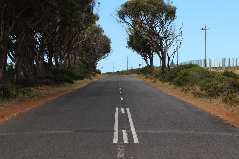 Südafrika Rundreise für eine Woche – von Kapstadt über die Garden Route zum Addo Elephant Nationalpark www.gindeslebens.com