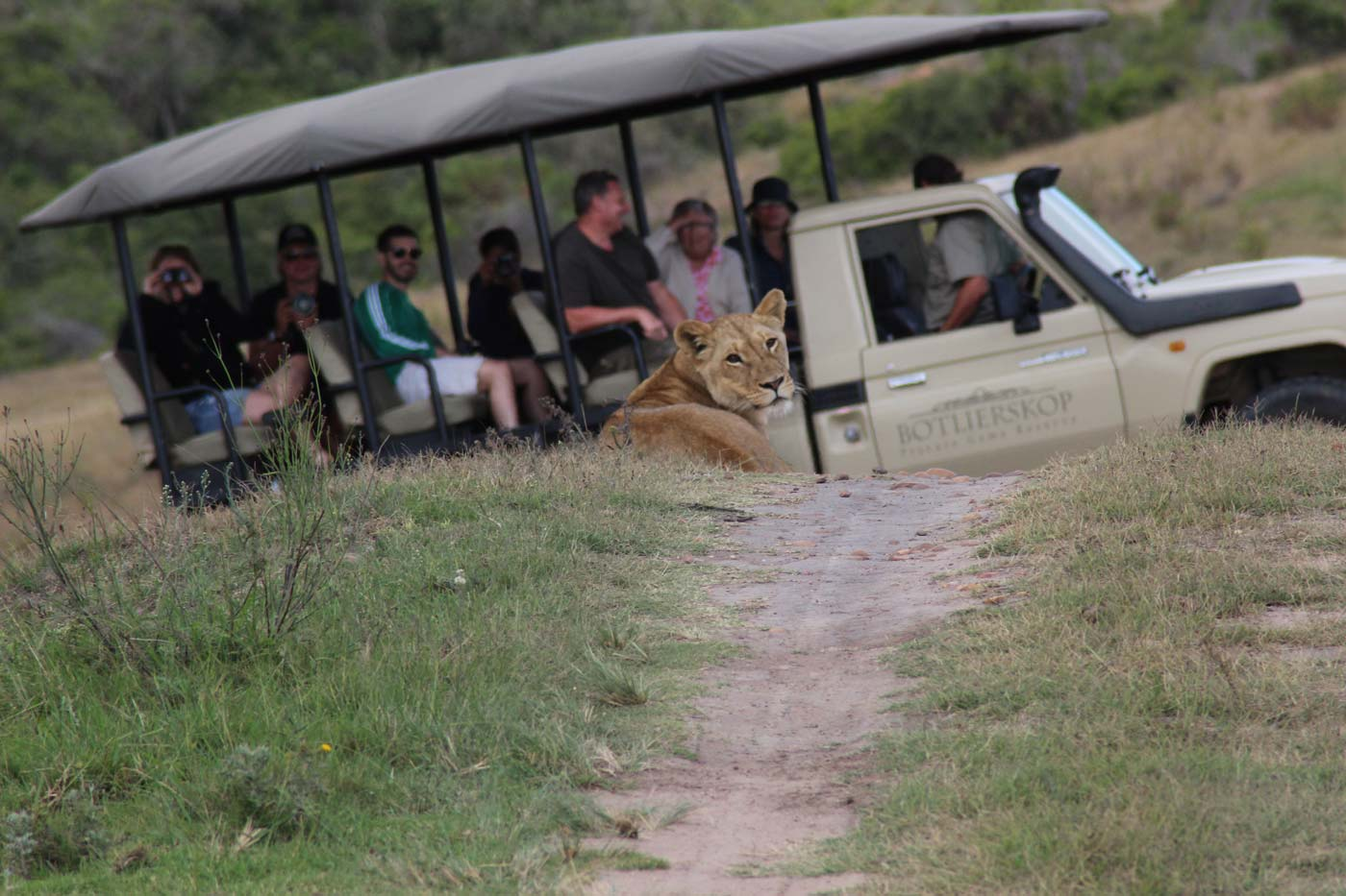 Botlierskop Private Game Reserve - traumhafte Safari Lodge an der Garden Route