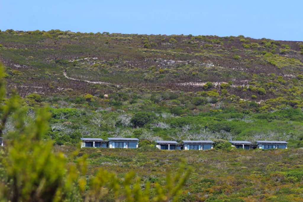 Grootbos Private Nature Reserve - Luxuslodge zwischen Kapstadt & Garden Route