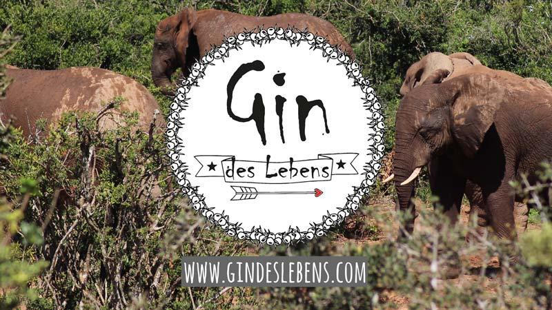 Addo Elephant Nationalpark Selbstfahrer Safari Südafrika