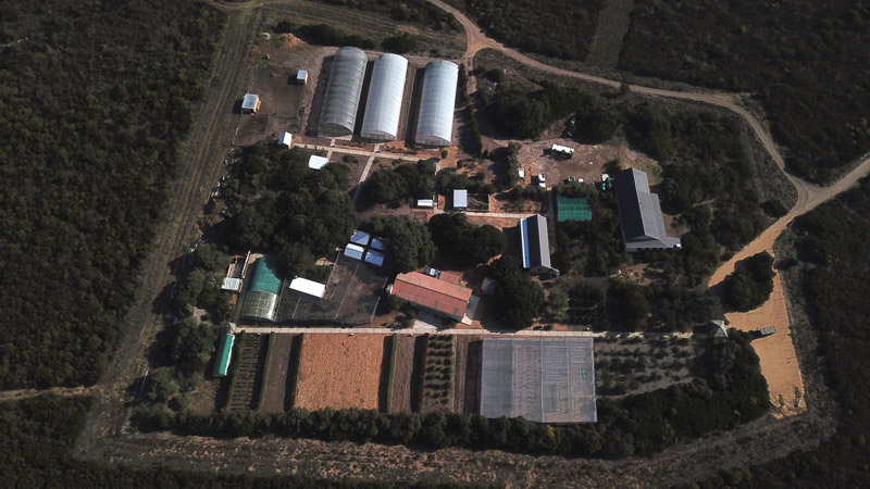 Growing the Futures Farm Grootbos