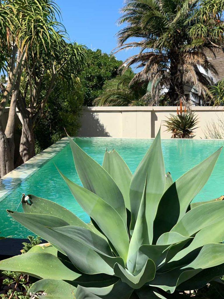 Pool Hoteltipp Port Elizabeth Isango Gate Boutiquehotel