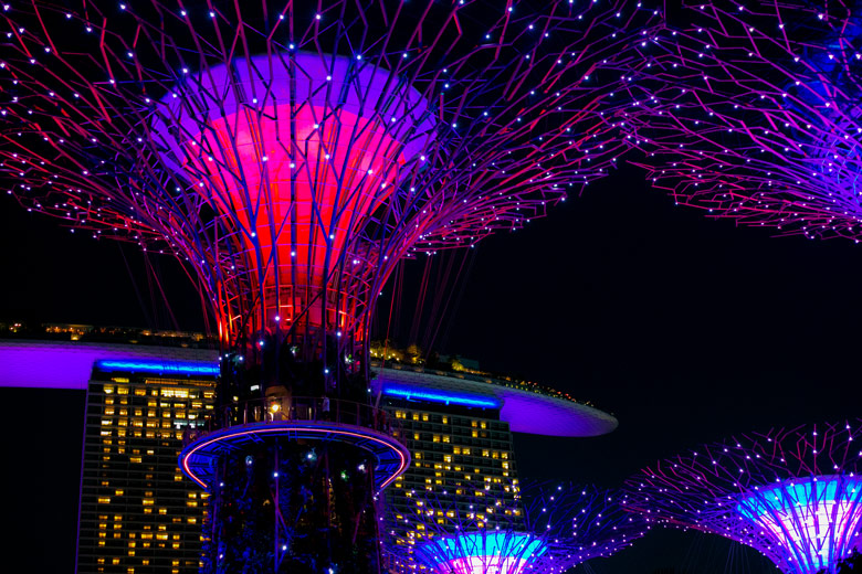 Singapur Super Trees Gardens by the Bay