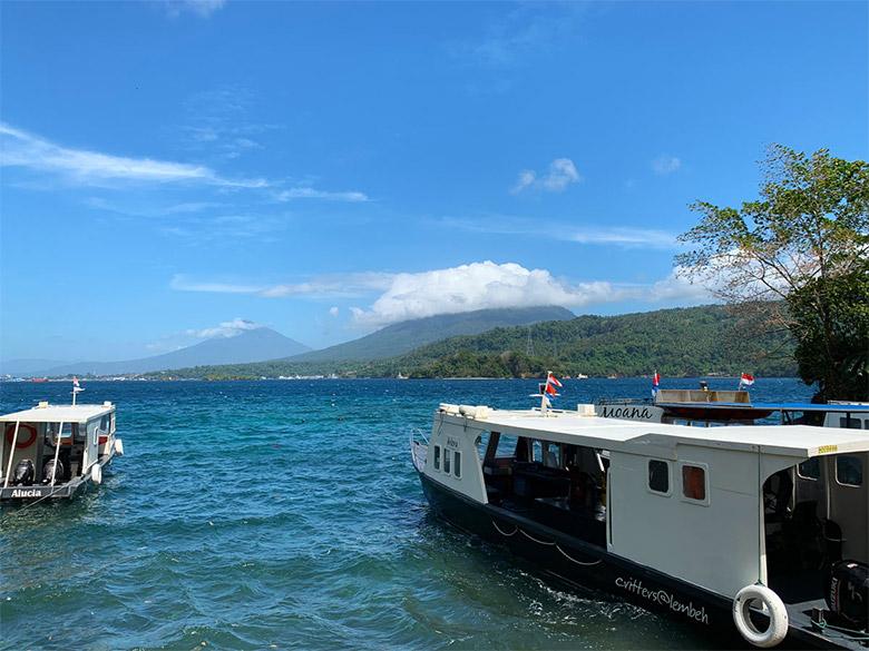 Lembeh Resort Sulawesi Tauchen Lembeh Strait