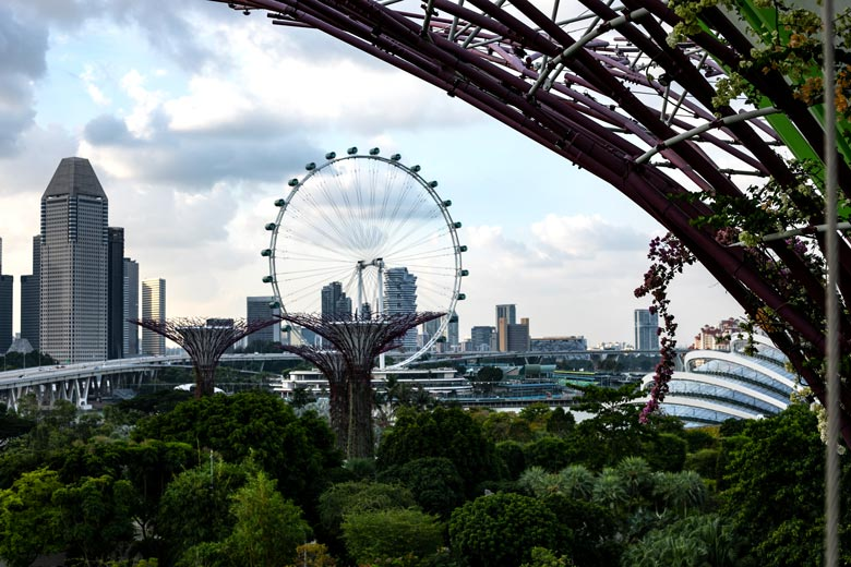 OCBC Skywalk Supertrees Singapur Highlights